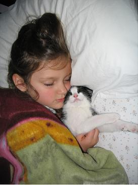 sleeping girl and kitty